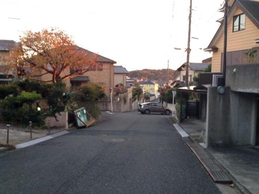 image_90
