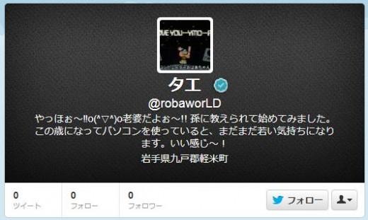 twitter-follower-bug1