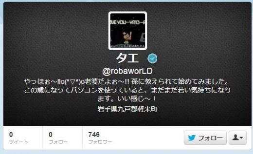 twitter-follower-bug10