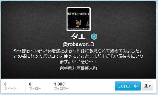 twitter-follower-bug12