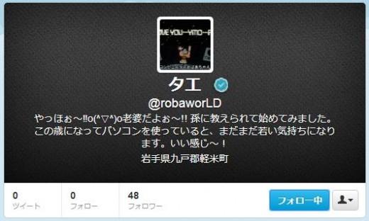 twitter-follower-bug3