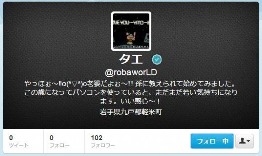 twitter-follower-bug4