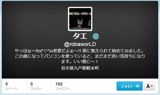 twitter-follower-bug4