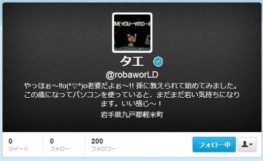 twitter-follower-bug5