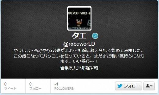 twitter-follower-bug7