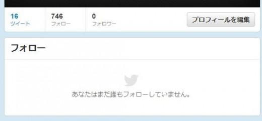 twitter-follower-bug9