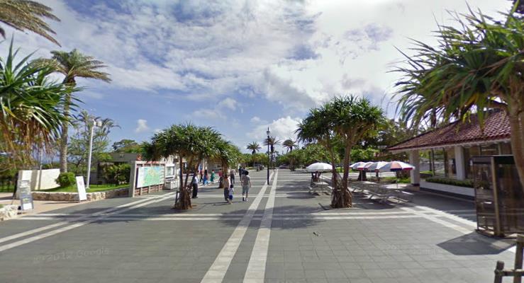 churaumi-on-google1