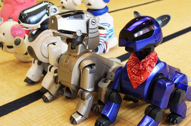 aibo-support-ended